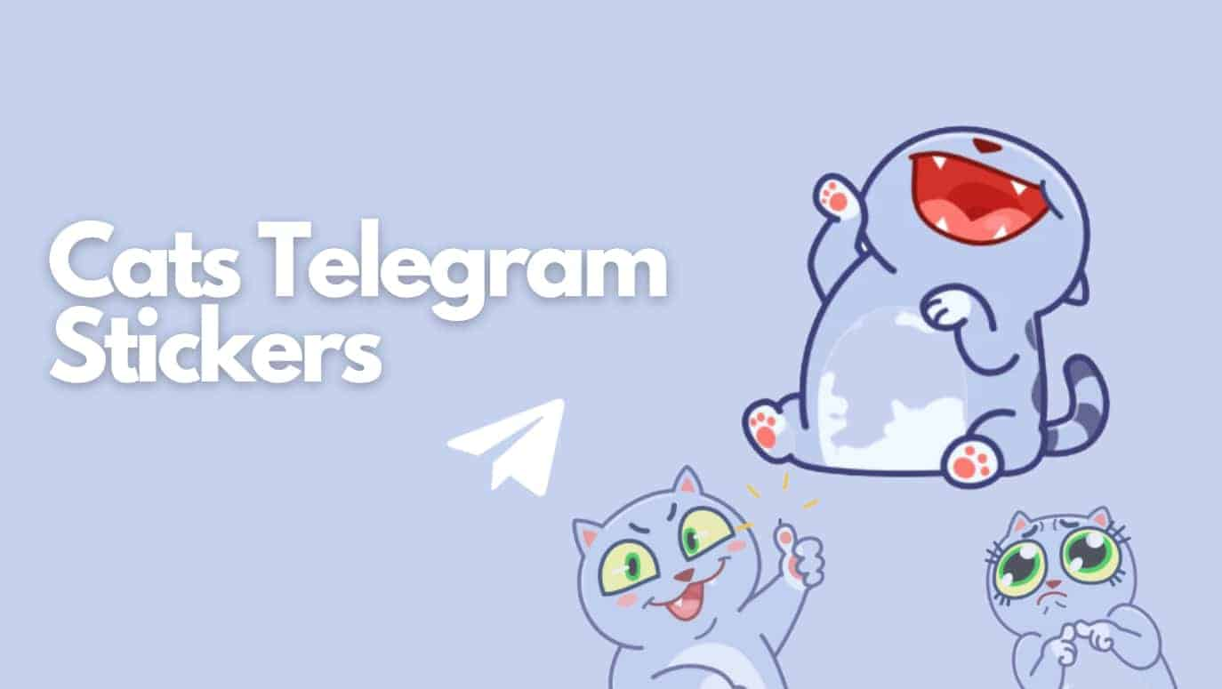 cats telegram stickers title and three crying cats picture