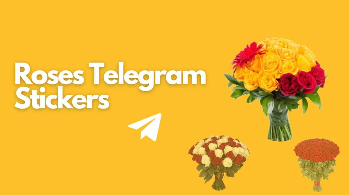 Roses telegram stickers title and three beautiful flowers pics